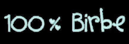 100birbe logo